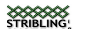 Stribling Systems Inc.